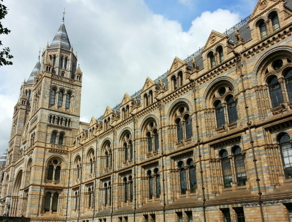 Save_Natural_ History_Museum_London